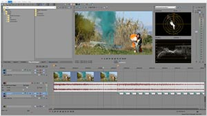 Film Looks, Cinematic Effects & Color Grading Presets for Sony Vegas
